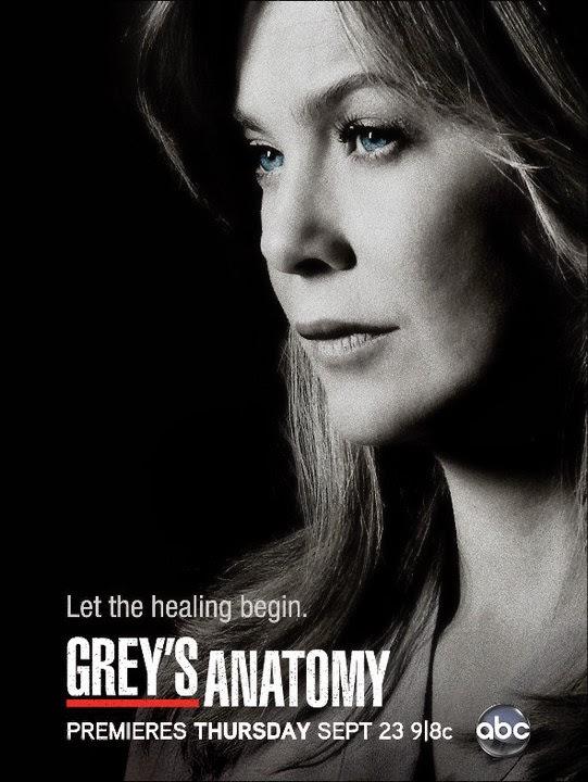 Ver Grey's Anatomy 11x05