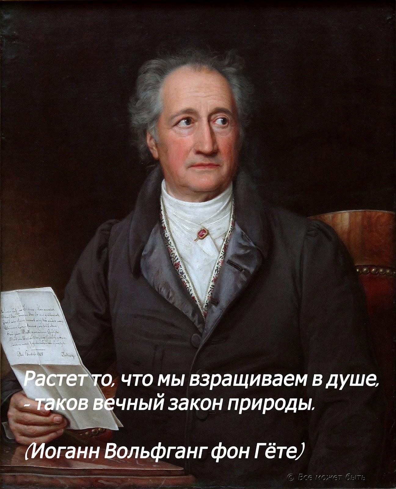 Цитаты гете о человеке