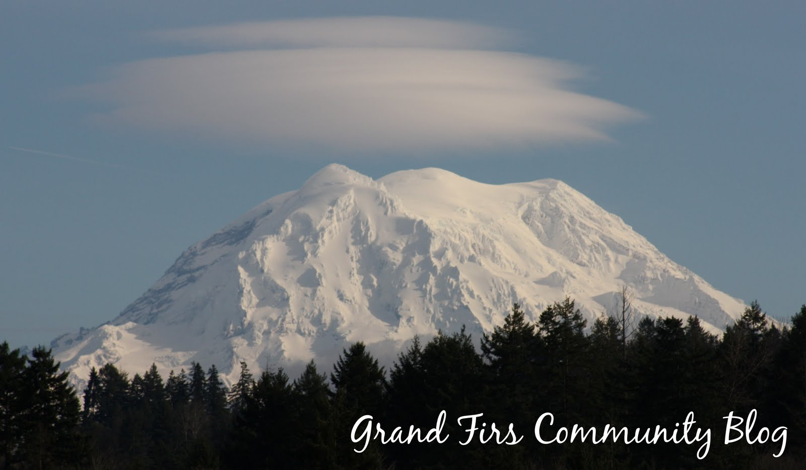 Grand Firs Community