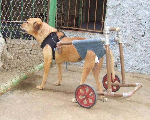 Como fazer cadeirinha de rodas