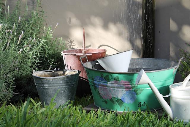 hacer un buen uso del agua de lluvia, para luego regar todas nuestras