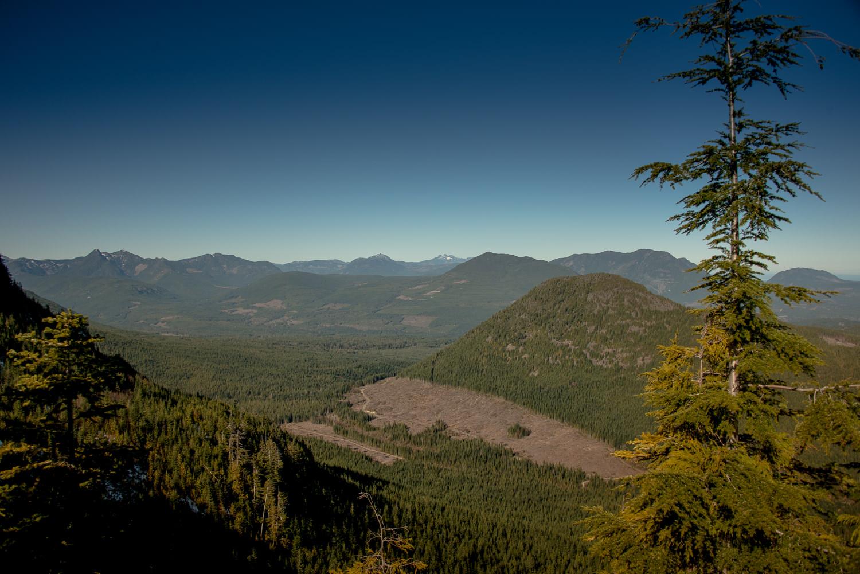 Buffalo Hump, Mount De Cosmos, Mount Hooker, Mount Arrowsmith, Mount Moriarty, Green Mountain and More