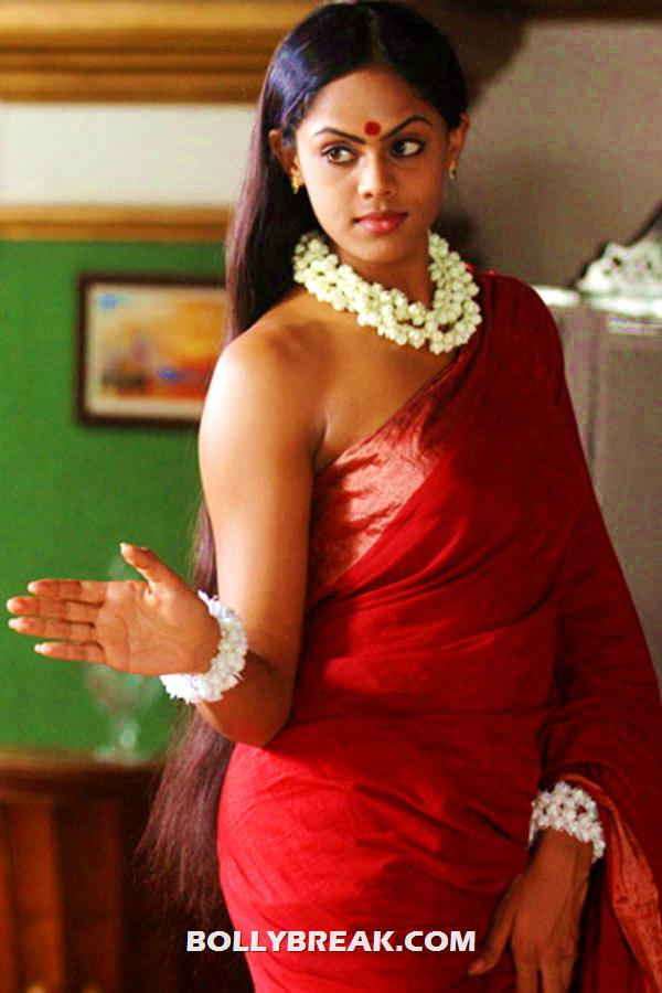 karthika hot photo in red sari with garland of flowers around neck - (3) -  Karthika photo shoot from Telugu movie
