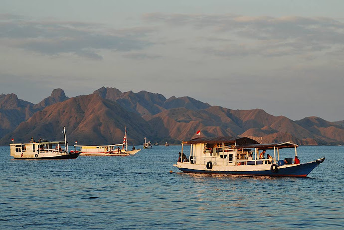 Barcos en la bahía de Flying Fox