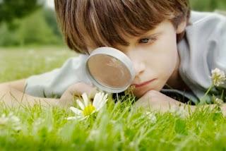 Childlike Curiosity