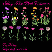Daisy PNG Pack Collection
