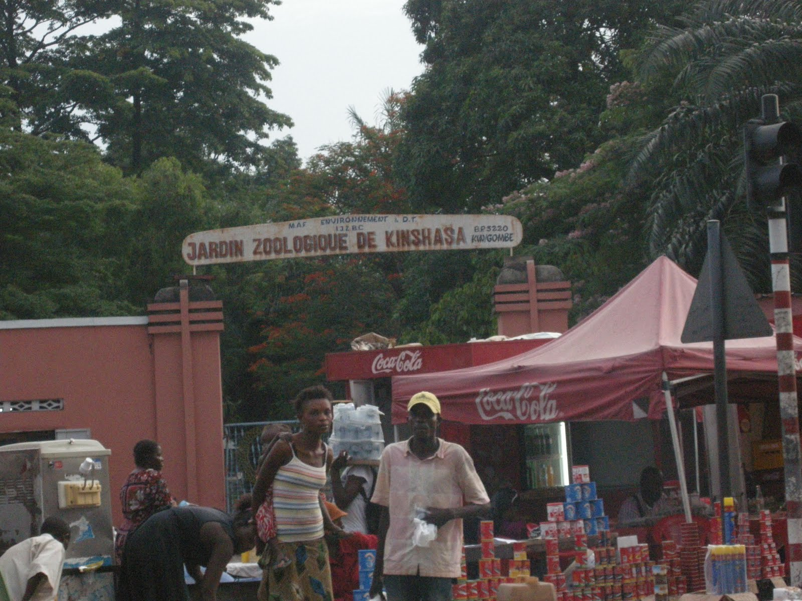 Congo masquerade kinshasa voter frustration for Jardin zoologique kinshasa
