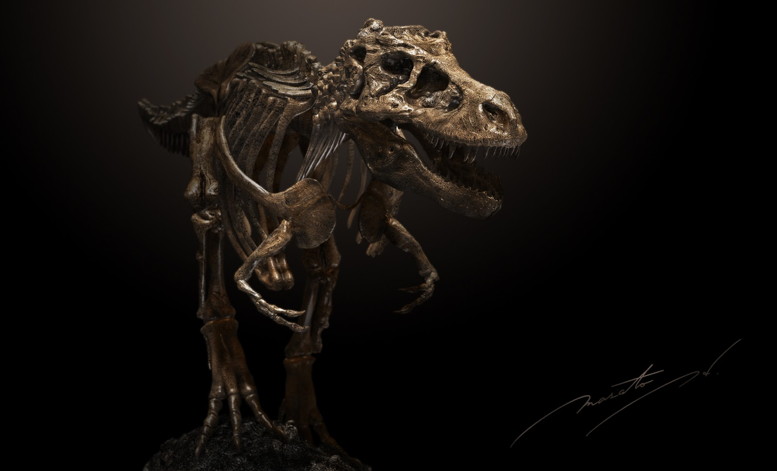 ティラノサウルスの画像 p1_24