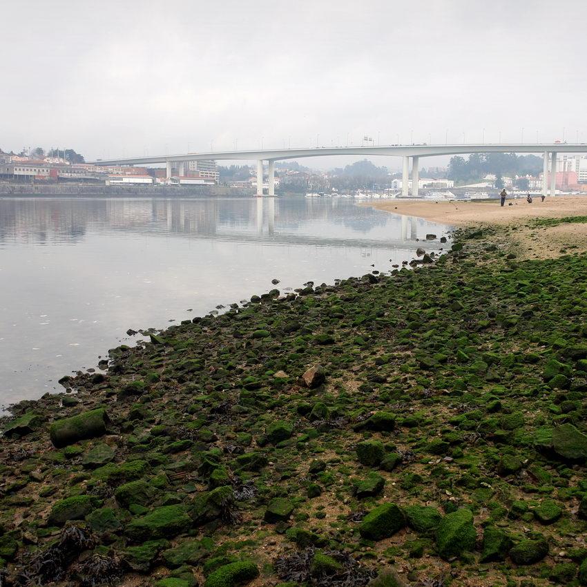Paisagem para o lado da Ponte do Freixo, com uma zona de pedra com limos verdes em primeiro plano