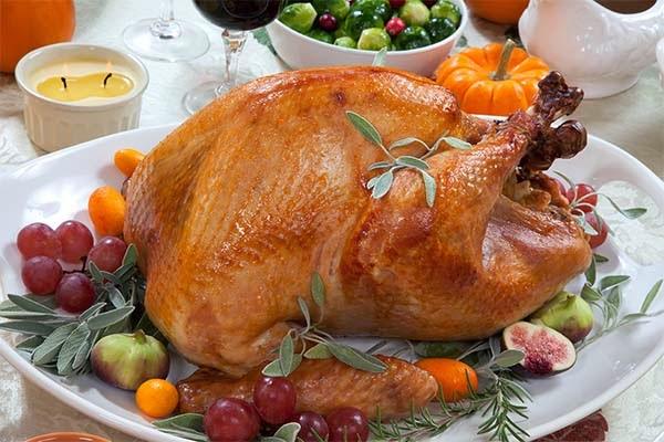 فوائد دجاج الرومي