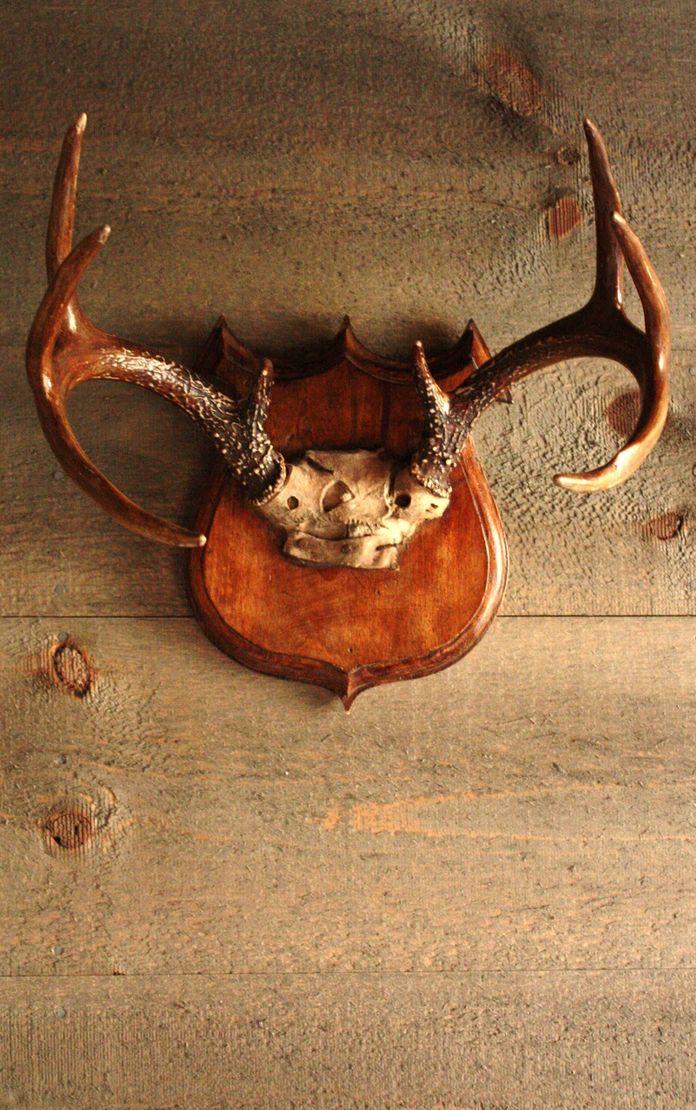antler antlerartisans drawer cabinet listing handles il pulls fullxfull sold by