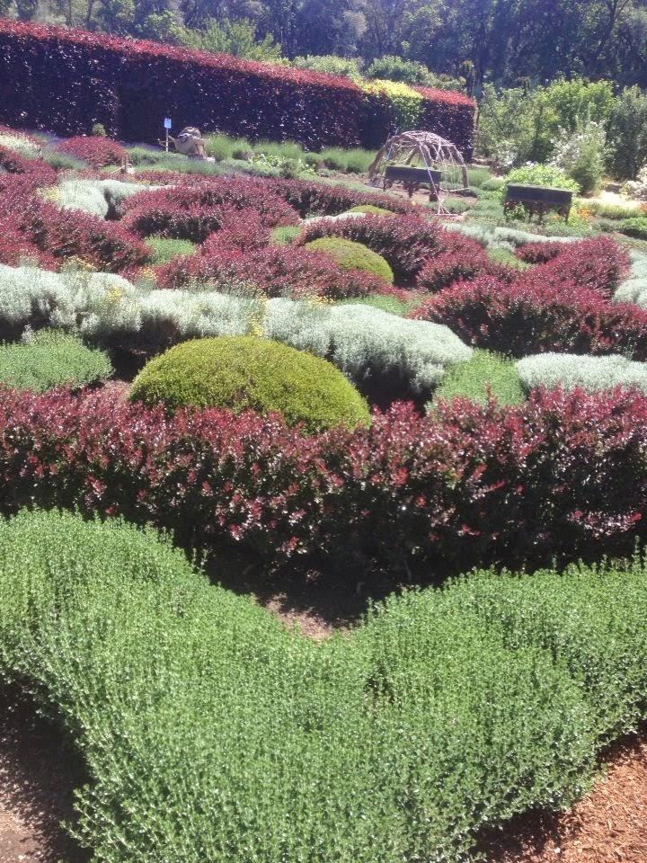knot garden filoli