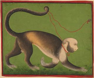 daud's+monkey.jpg