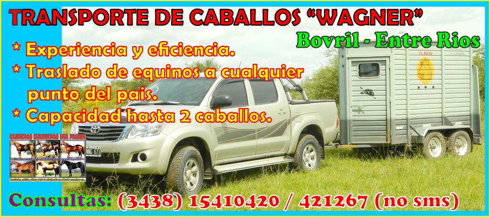 TRANSPORTE DE CABALLOS WAGNER