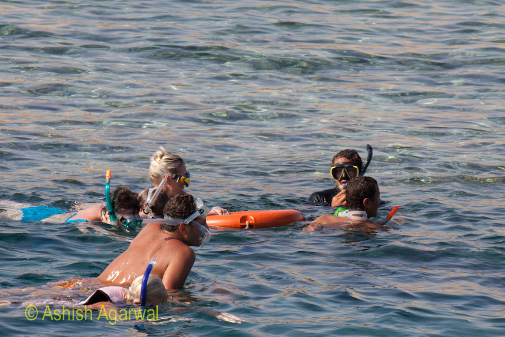 People wearing snorkeling gear heading in the direction that the guide is leading them towards