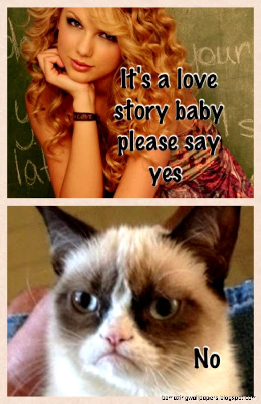 Grumpy cat and Taylor swift  funny  Pinterest