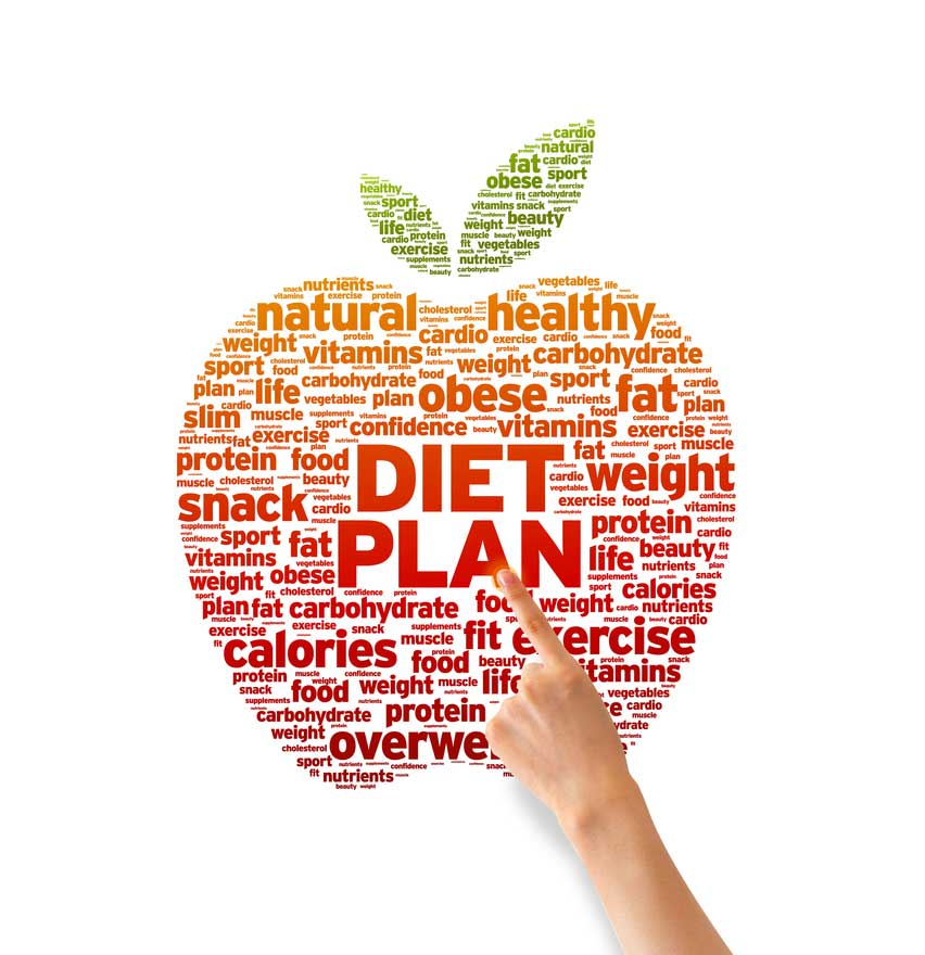 Online diet plans uk