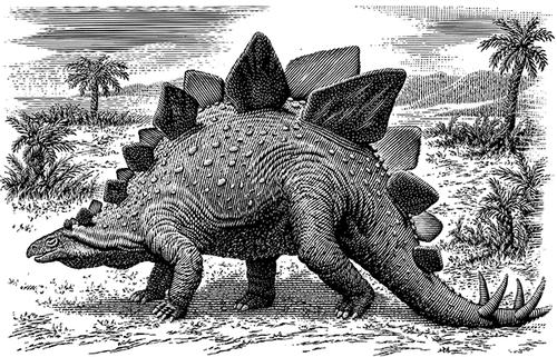 21-Stegosaurus-Michael-Halbert-Scratchboard-Images-of-Animals-and-Architecture-www-designstack-co