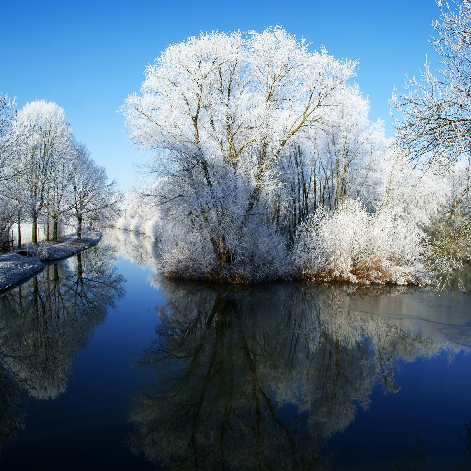 Winter Themed HD Wallpapers For IPad 4