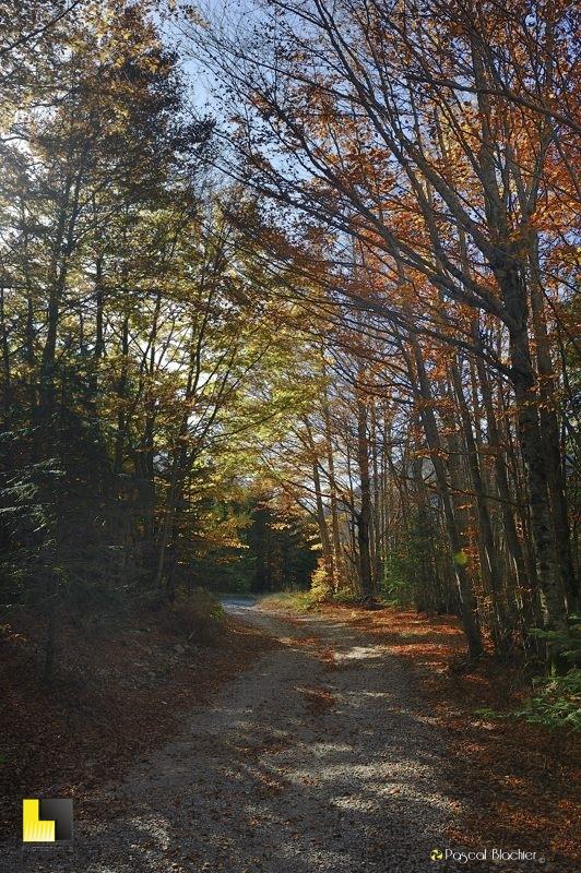 chemin en automne lus la croix haute photo blachier pascal