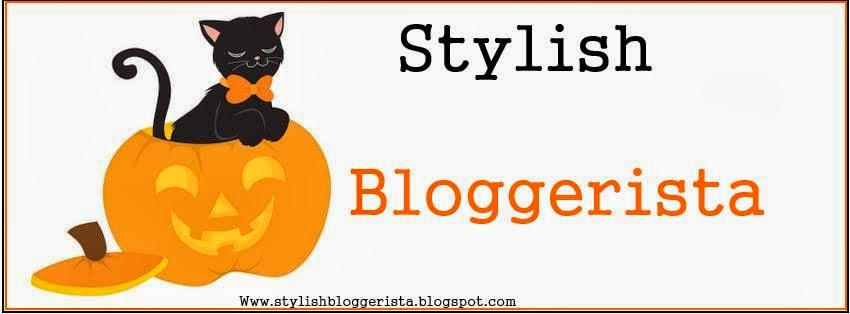 stylish bloggeritsa