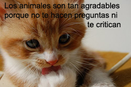 los animales agradables