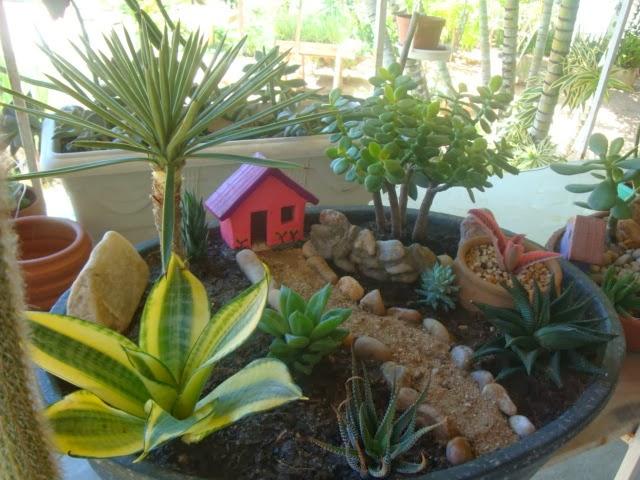 mini jardins em vaso: dentro de um pequeno vaso, várias plantinhas são postas em harmonia