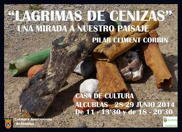 """""""LAGRIMAS DE CENIZA"""""""