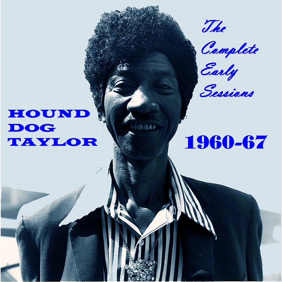 Hound Dog Taylor Give Me Back My Wig