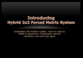 hybrid-2x2-forced-matrix