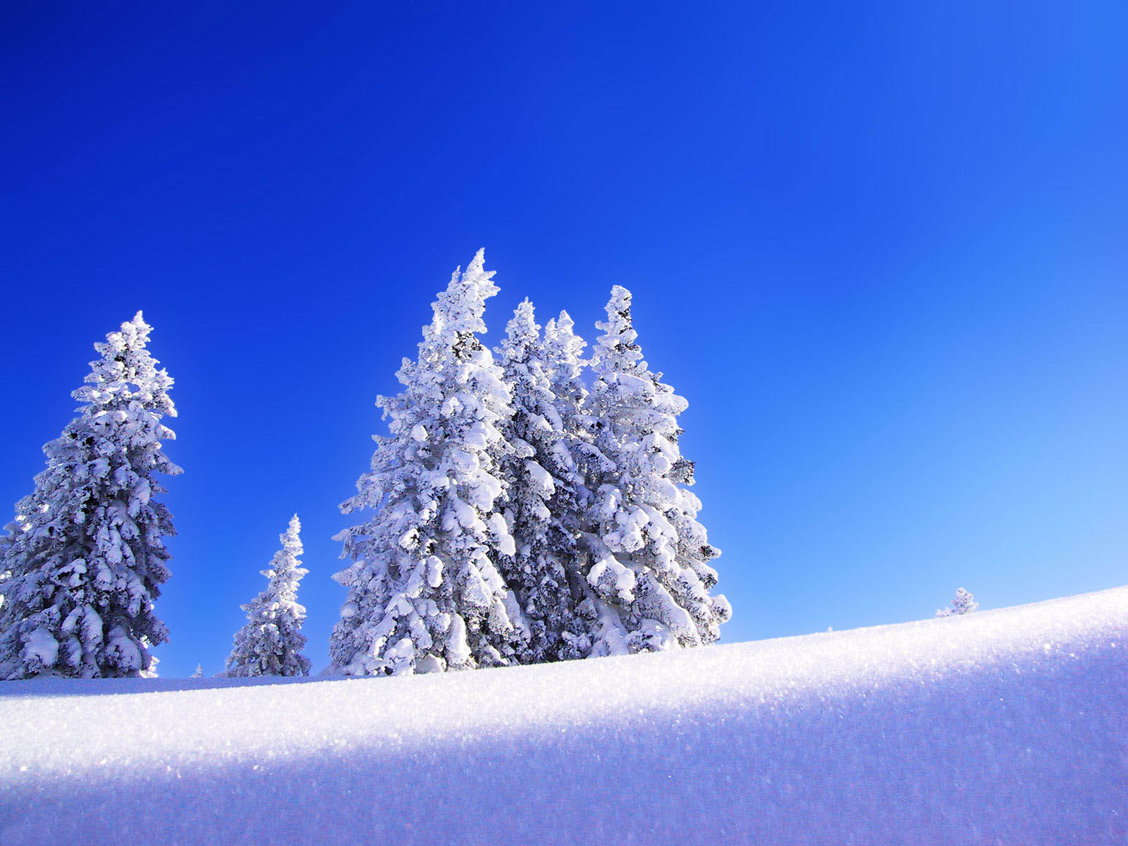 wallpapers Snow Wallpapers