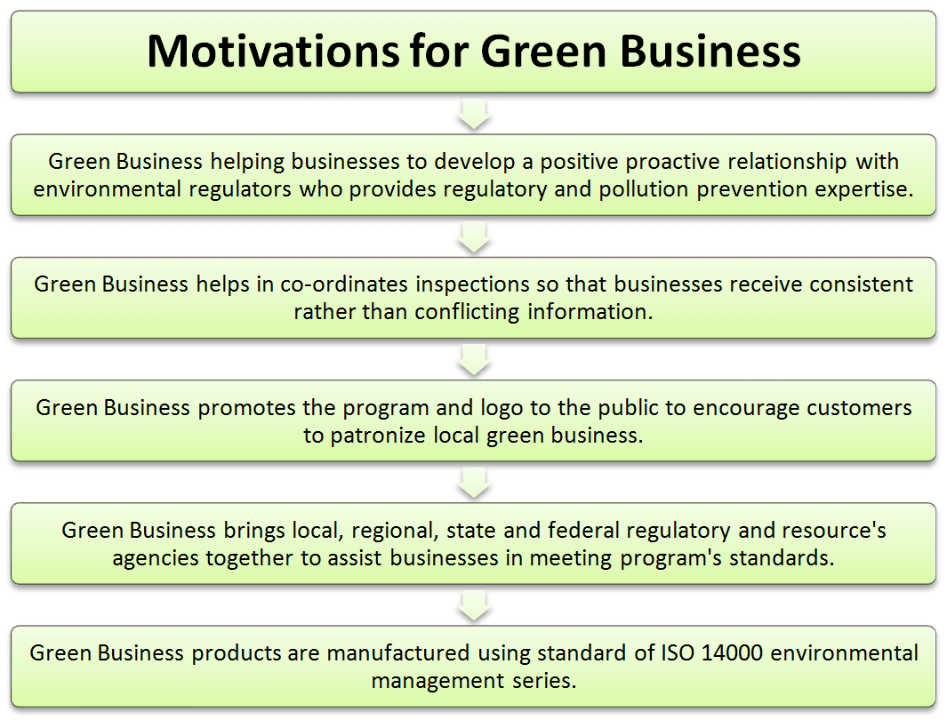 Motivations for green business