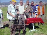 Νικητής Derby 2009