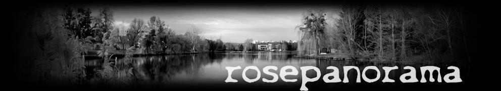 rosepanorama