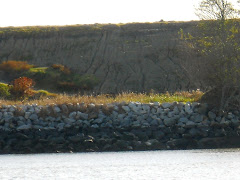 Elba Island in the Savannah River.  Nice stone wall. Story is, a woman waved to all ships for years