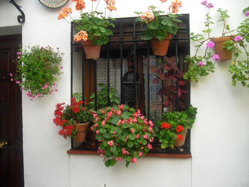 senderismo por c diz patios cordobeses 2011 On patios adornados
