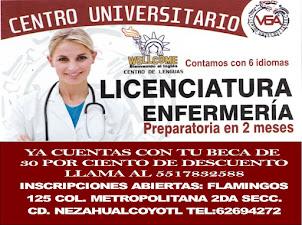 LLAMA AL 5517832588