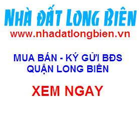http://3.bp.blogspot.com/-PE0_HA_GZrw/VMbseHEUP0I/AAAAAAAAFWU/1bGkTk4-F4k/s1600/logo-nhadatlongbien.png