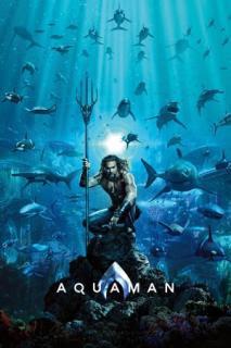 Baixar Aquaman 2018 Torrent Dublado