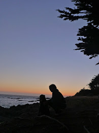 "Visiting Coastal California's ""The Sea Ranch"""