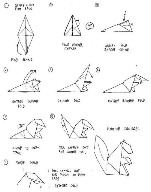 Origami Instruction Squirrel