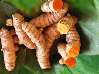 Kunyit - Jamu Herbal Tradisional Pelancar Haid