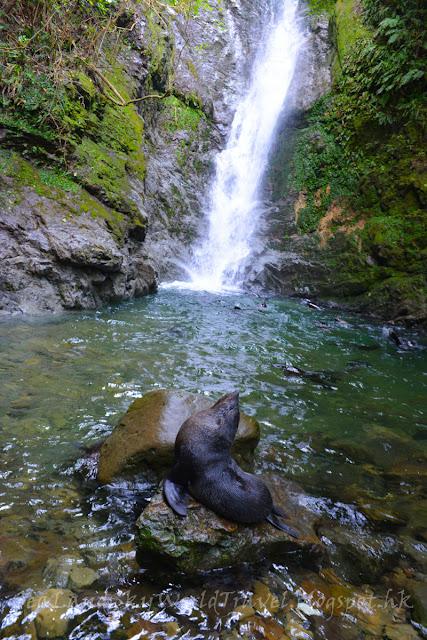 Kaikoura Ohau Stream Walkway and Waterfall