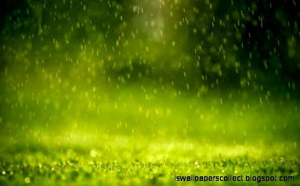 Pin Spring Rain Windows Animated Wallpaper Gallery