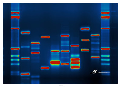Genetic Algorithm DNA