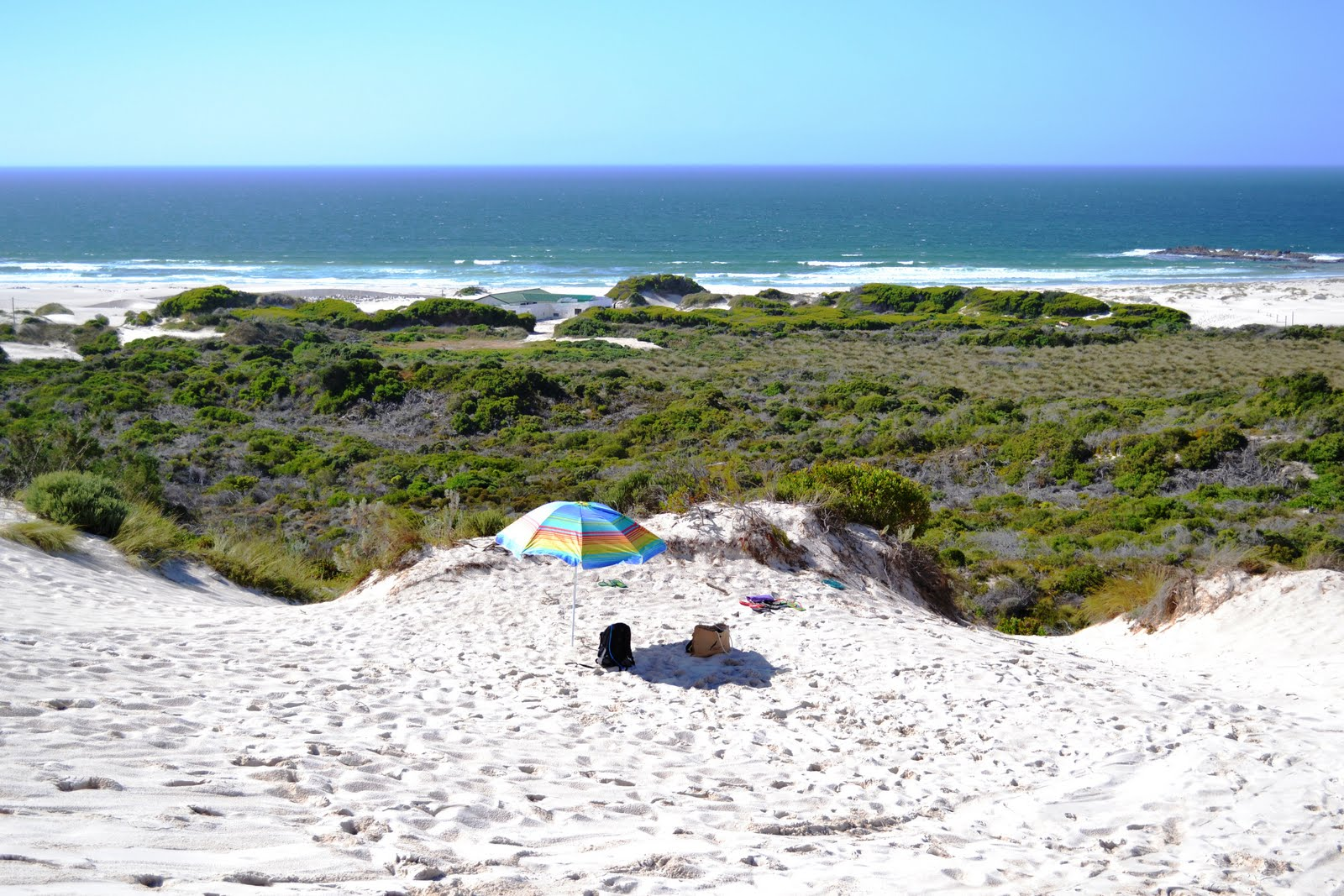 Sandboarding In Betty S Bay South Africa