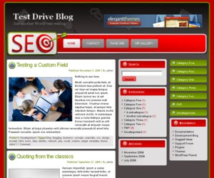 Bullseye SEO WordPress Theme