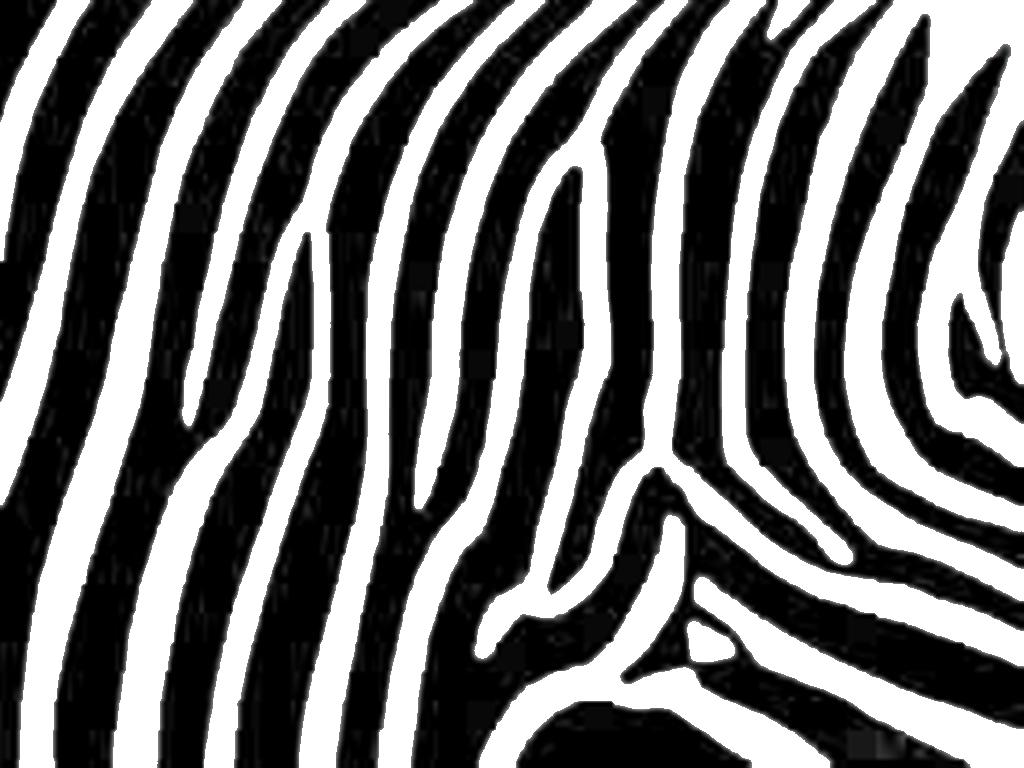 Print Animals