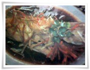 Tim Ikan Kerapu