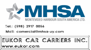 Sponsor MHSA